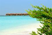 Iru Fushi Beach Resort & Spa - Maldives - image 4