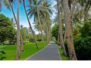 Sun Island Resort & Spa - Maldives - image 5
